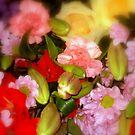 Full bloom by supernan