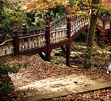 Crim Dell Bridge by Timothy Gass