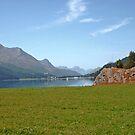 Switzerland, Engadine by Monica Engeler