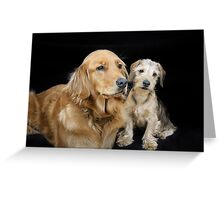 Golden Retriever and Dachshund Puppy - a sweet couple Greeting Card