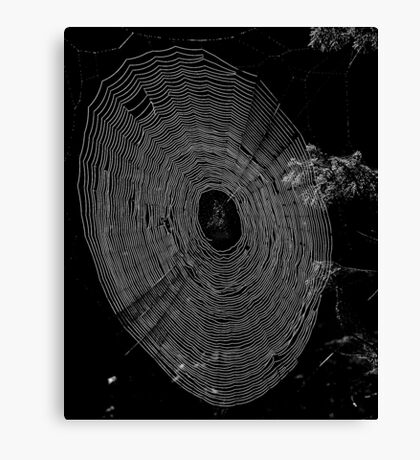 Monochrome Web Canvas Print