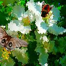Apple blossoms Butterfly and Bee by MaeBelle