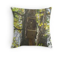 Waiting for the Flickers Throw Pillow