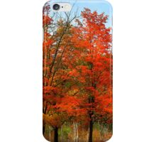 """ Blaze Red for Fall"" #5 iPhone Case/Skin"