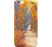 A Painter`s Light iPhone Case/Skin