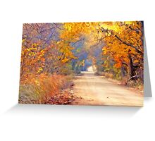 A Painter`s Light Greeting Card