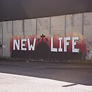 New Life by Jesse Cain