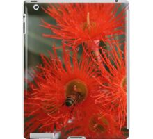 Red wattle iPad Case/Skin