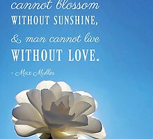 A Flower Cannot Blossom Without Sunshine Quote by Nalin Solis