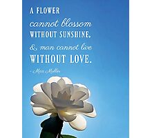 A Flower Cannot Blossom Without Sunshine Quote Photographic Print