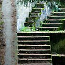 Upward Descending by Greg German