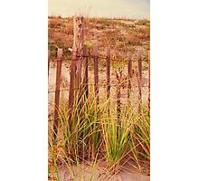 Beach Dune fence at Cape May NJ Photographic Print