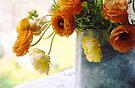 Ranunculas in Tin by Barbara Wyeth