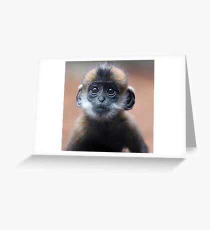 Babe Greeting Card