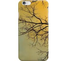 Early Morning Storm iPhone Case/Skin