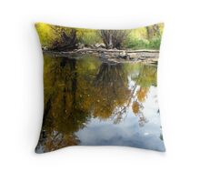 Reflecting Sky and Trees Throw Pillow
