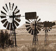 Sepia Windmills by Michelle Fluri