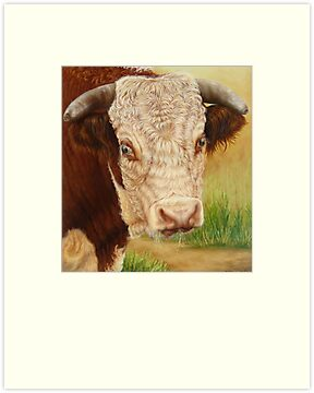 Jackpot the Bull by Margaret Stockdale