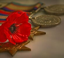 Remembrance Day by Rosalie Dale