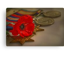 Remembrance Day Canvas Print