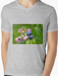 Blueberry fruit Mens V-Neck T-Shirt