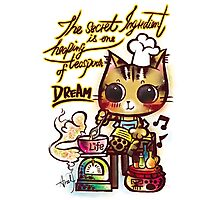Sweet Cat Wisdom Quote / Dream and Life Photographic Print
