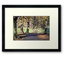 Chilly Autumn morning in Cotteridge  Framed Print