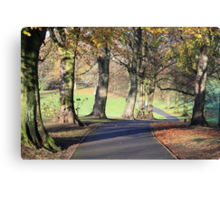 Chilly Autumn morning in Cotteridge  Canvas Print