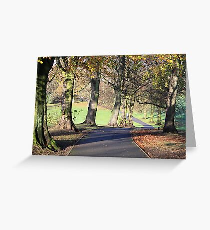 Chilly Autumn morning in Cotteridge  Greeting Card