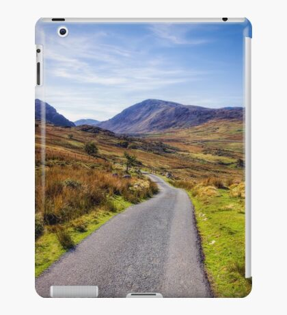 Road To Nowhere iPad Case/Skin