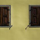2 OF A KIND by June Ferrol
