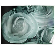 Iced Rose Poster