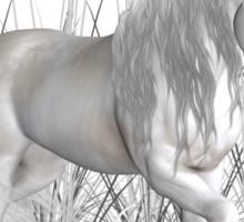 Ivory .. a white stallion Sticker