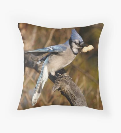 The Preferred Nut Throw Pillow