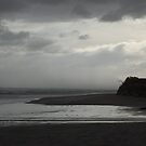 Western Ocean, Tasmania by Joanna Beilby