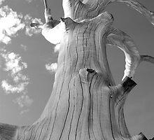 truncated tree by Naia