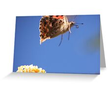 Look, mum, I can fly!!!!!!! Greeting Card