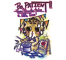 Patience Cat Wisdom Quote / Even Miracles Take Time Photographic Print