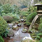 Japanese Garden by ruthbacker