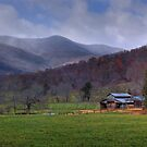 Blue Ridge Mountain Farms by Jane Best by Jane Best