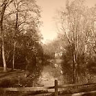 Mill Stream, Allaire, NJ by Jaee Pathak