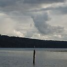 On Quilcene Bay by Greg German