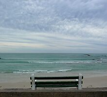 A view at Arniston by fourthangel