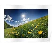 Buttercup Wave - Homer, nr Much Wenlock Poster