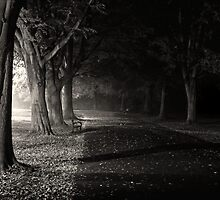 Beware of the Dark Side by Alan Watt