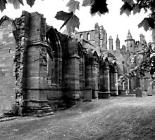 Melrose Abbey by Martina Fagan