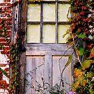 A door...... by DaveHrusecky