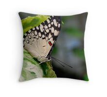 Little Flutterbye Throw Pillow