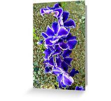 Nisha Blossoms Greeting Card
