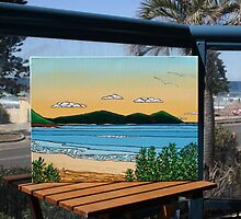 Shelly Beach by David  Bell